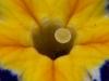 19-03-09_0452.jpg
